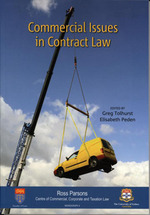 Commercial Issues in Contract Law: Papers from the Commercial Law Quarterly 20th Anniversary Conference