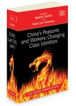 Chinas Peasants and Workers: Changing Class Identities