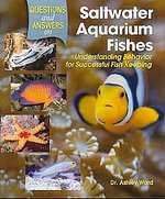 Questions and Answers on Saltwater Aquarium Fishes