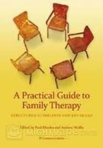 A Practical Guide to Family Therapy: Structured Guidelines and Key Skills