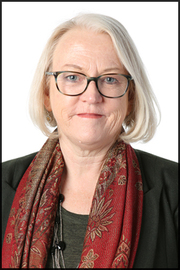 Professor Joellen Riley