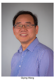 Associate Professor Qiying Wang